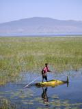 Ethiopia  Lake Awassa; a Young Boy Punts a Traditional Reed Tankwa Through the Reeds