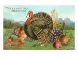 Thanksgiving Greetings  Turkey with Fruits