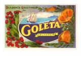 Season's Greetings from Goleta  California