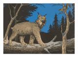 Woodcut of Canada Lynx