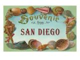 Souvenir from San Diego  California