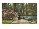 Magnolia Gardens  Charleston  South Carolina