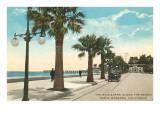 Boulevard along Beach  Santa Barbara  California
