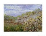 Baume in Blute Reproduction d'art par Claude Monet