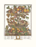 Twelve Months of Fruits  1732  June