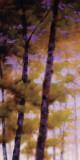 Purple Wood I