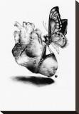Chirurgie Tableau sur toile par Kenn Olsen