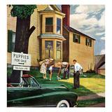"""Picking a Puppy""  September 30  1950"