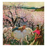 """Apple Blossom Time""  May 6  1950"