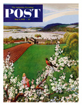 """""""Harbinger of Spring"""" Saturday Evening Post Cover  May 7  1955"""