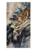 Ferocious Tiger Stalking a Mountain Path