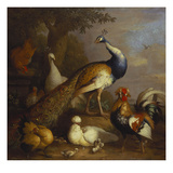 A Peacock  a Peahen and Poultry in a Landscape