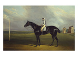 Mr RO Gascoigne's 'Jerry' with B Smith Up on Doncaster Racecourse