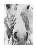 Vogue - September 1968 - Conchita Cintron & Horse Photo premium par Henry Clarke