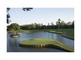 TPC Sawgrass Stadium Course  Island green  Hole 17