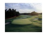 Pinehurst Golf Course No 2  putting green
