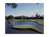 TPC Sawgrass the Stadium Course  Hole 17