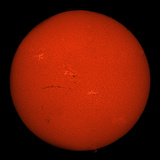 H-Alpha Full Sun in Red Color with Active Areas and Filaments