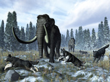 A Pack of Dire Wolves Crosses Paths with Two Mammoths During the Upper Pleistocene Epoch