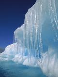 Icicles Hanging from Iceberg  Petermann Island  Antarctic Peninsula  Antarctica