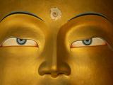 Maitreya  Close Up of Statue Head  Buddha  Tikse Monastery  Ladakh  India  Himalayas