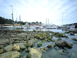 Boats in Camden Harbor