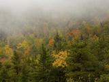 Fall Views from the Slopes of Cadillac Mountain  Acadia National Park