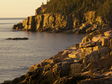 Otter Cliff at Sunrise  in Acadia National Park