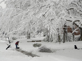 A Man Shoveling a Path in the Snow as His Pet Dog Relaxes