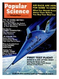 Front Cover of Popular Science Magazine: November 1  1973