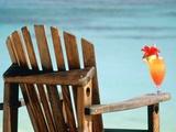 Seychelles  Denis Island  beach chair and fruit cocktail