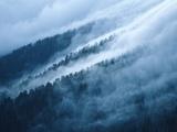 Fog in the Smokey Mountains