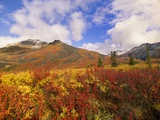 Tundra and Ogilvie Mountains in Fall Colors