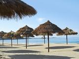 Sunny Beach and Palapas