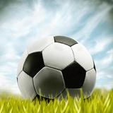 Soccer Ball Resting on Grass