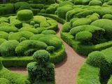 Topiary Garden at Chateau de Marqueyssac