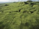 North Kohola Area