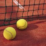 Tennis balls and net