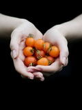 Handful of Tomatoes
