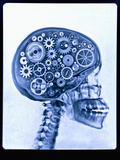 X-ray of skull with gears Papier Photo par Thom Lang