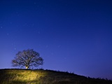 Burrow Hill  Somerset  at night