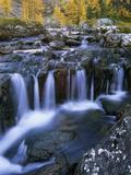 Lake O'Hara  Opabin Plateau  Cascade Lakes  Yoho National Park  British Columbia  Canada