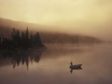 Fishing  Little Charlotte Lake  Chilcotin Region  British Columbia  Canada