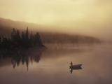 Fishing, Little Charlotte Lake, Chilcotin Region, British Columbia, Canada. Papier Photo par Chris Harris