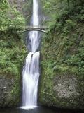 USA  Oregon  Columbia River Gorge Area  Scenic Waterfalls  Multonomah Falls