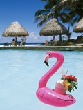 Cook Islands  South Pacific  Rarotonga  Tropical Drink in Pink Flamingo Float