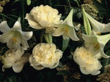 Easter Lilies and White Peonies