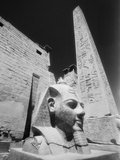 Detail of the Temple of Luxor