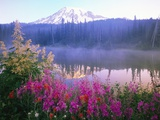 Wildflowers in Bloom by Lake on Mount Rainier Reproduction d'art par Craig Tuttle