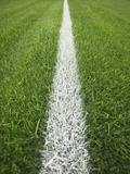 Painted Line on Athletic Field
